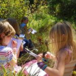 Junior Explorer Day Camp - July 2020
